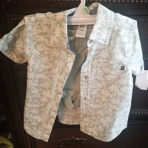 24 month old boy safari summer outfit